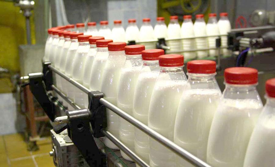 марки молочной продукции
