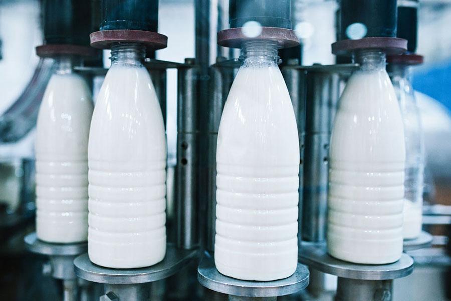 Производство молока и молочной продукции
